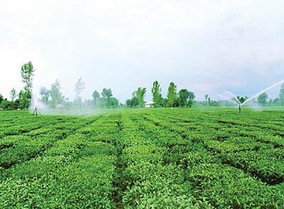 مشکلات نظام بهره برداری کشاورزی ایران